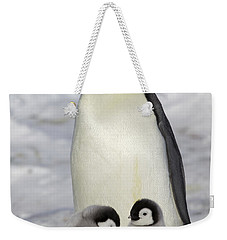 Emperor Penguin And Two Chicks Weekender Tote Bag by Frederique Olivier
