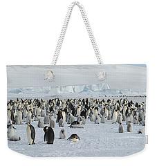 Emperor Penguins Aptenodytes Forsteri Weekender Tote Bag by Panoramic Images