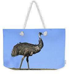 Emu Portrait Sturt National Park Weekender Tote Bag by Konrad Wothe