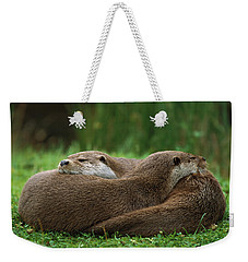 European River Otter Lutra Lutra Weekender Tote Bag by Ingo Arndt