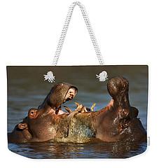 Fighting Hippo's Weekender Tote Bag by Johan Swanepoel