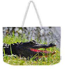 Gator Grin Weekender Tote Bag by Al Powell Photography USA