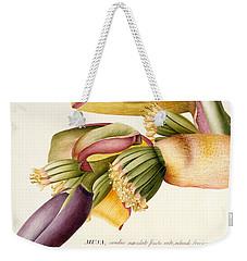 Flower Of The Banana Tree  Weekender Tote Bag by Georg Dionysius Ehret