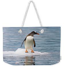 Gentoo Penguin On Ice Floe Antarctica Weekender Tote Bag by Yva Momatiuk John Eastcott
