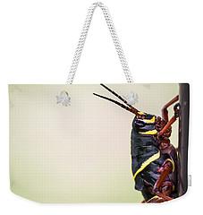 Giant Eastern Lubber Grasshopper Weekender Tote Bag by Edward Fielding