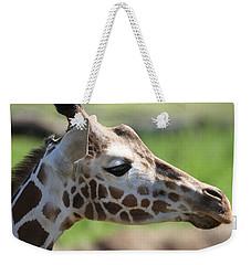 Giraffe Portrait Weekender Tote Bag by Dan Sproul