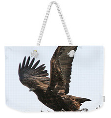 Weekender Tote Bag featuring the photograph Golden Eagle Takes Off by Bill Gabbert