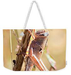 Grasshopper In The Marsh Weekender Tote Bag by Carol Groenen