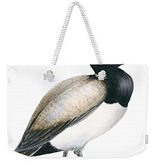 Greater Scaup Weekender Tote Bag by Anonymous
