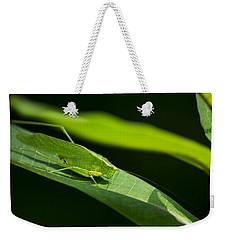 Green Katydid Weekender Tote Bag by Christina Rollo