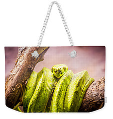 Green Tree Python Weekender Tote Bag by Pati Photography