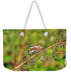 Gregarious Grasshoppers Weekender Tote Bag by Al Powell Photography USA