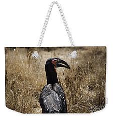 Ground Hornbill-africa Weekender Tote Bag by Douglas Barnard