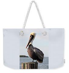 Handsome Brown Pelican Weekender Tote Bag by Carol Groenen