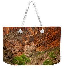 Havasu Creek Number 3 Weekender Tote Bag by Inge Johnsson