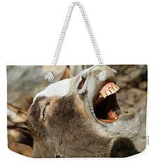 Hee - Haw Weekender Tote Bag by Donna Kennedy