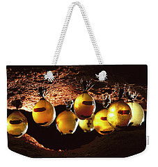 Honeypot Ants Weekender Tote Bag by Reg Morrison