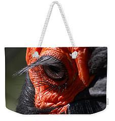 Hornbill Closeup Weekender Tote Bag by David Salter