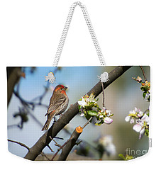 House Finch Weekender Tote Bag by Mike Dawson