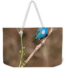 Indigo Bunting Portrait Weekender Tote Bag by Bill Wakeley