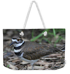 Killdeer Weekender Tote Bag by Dan Sproul