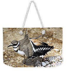 Killdeer Fakeout Weekender Tote Bag by Shane Bechler