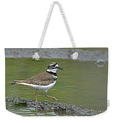 Killdeer Walking Weekender Tote Bag by Sharon Talson