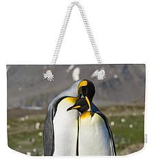King Penguins Courting St Andrews Bay Weekender Tote Bag by Konrad Wothe