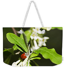 Ladybug And Flowers Weekender Tote Bag by Christina Rollo