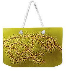 Lampbrush Chromosomes Newt, Lm Weekender Tote Bag by Science Source