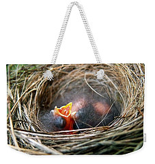Life In The Nest Weekender Tote Bag by Christina Rollo