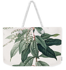 Lily Of The Valley Tree Weekender Tote Bag by Pierre Joseph Redoute