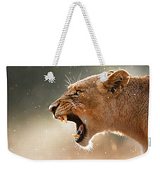 Lioness Displaying Dangerous Teeth In A Rainstorm Weekender Tote Bag by Johan Swanepoel