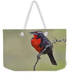 Long-tailed Meadowlark Weekender Tote Bag by Tony Beck