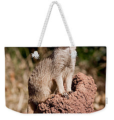 Lookout Post Weekender Tote Bag by Michelle Wrighton