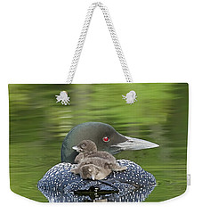 Loon Chicks -  Nap Time Weekender Tote Bag by John Vose