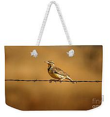 Meadowlark And Barbed Wire Weekender Tote Bag by Robert Frederick