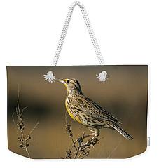 Meadowlark On Weed Weekender Tote Bag by Robert Frederick