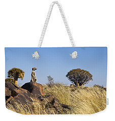 Meerkat In Quiver Tree Grassland Weekender Tote Bag by Vincent Grafhorst