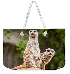 Meerkat Pair Weekender Tote Bag by Jamie Pham