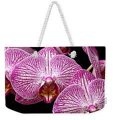 Moth Orchid Weekender Tote Bag by James Brunker