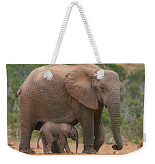 Mother And Calf Weekender Tote Bag by Bruce J Robinson