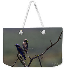 Mountain Bluebird Pair Weekender Tote Bag by Mike  Dawson