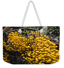 Mushrooms On Tree Trunk Panguana Nature Weekender Tote Bag by Konrad Wothe