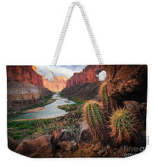 Nankoweap Cactus Weekender Tote Bag by Inge Johnsson