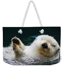 Napping On The Water Weekender Tote Bag by Mike  Dawson