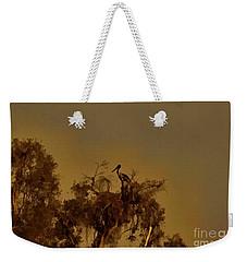 Nesting Jabiru  Weekender Tote Bag by Douglas Barnard