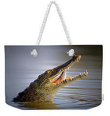 Nile Crocodile Swollowing Fish Weekender Tote Bag by Johan Swanepoel