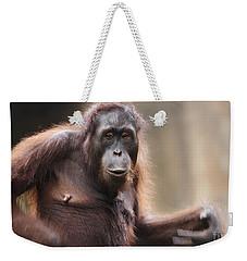 Orangutan Weekender Tote Bag by Richard Garvey-Williams