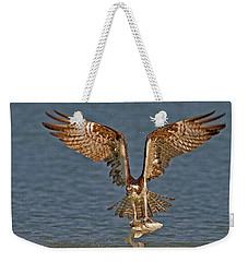 Osprey Morning Catch Weekender Tote Bag by Susan Candelario